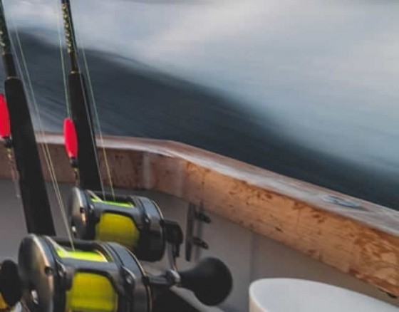 reef-fishing-albufeira
