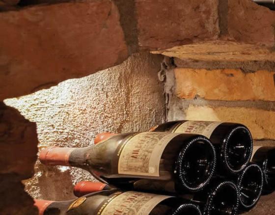 wine-tasting-albufeira