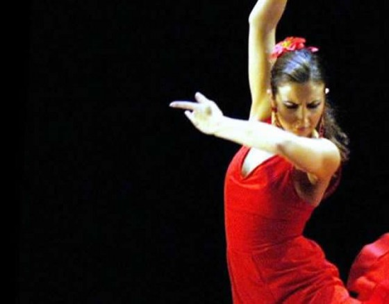 Flamenco Dancing Show