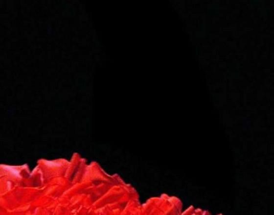 flamenco-show-benalmadena